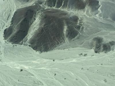 大きな時空に包まれて~南米12日間  3.ナスカの地上絵