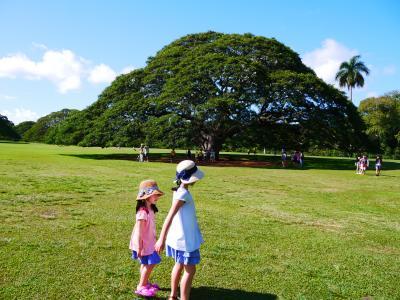 9歳5歳子連れ&3世代旅行~HAWAII~機内と1日目