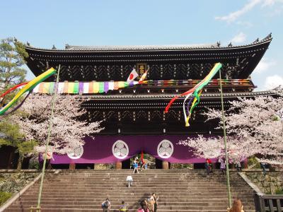 春の京都2017 一人旅 その2 ~八坂神社、円山公園、知恩院、平安神宮~