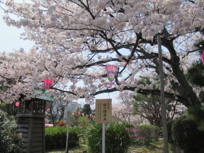 芦城公園と片山津温泉 ぶらりきままドライブ!