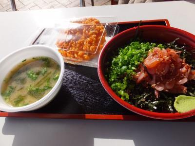 青春18きっぷで静岡のプチグルメ旅。その2 由比の桜えび丼。