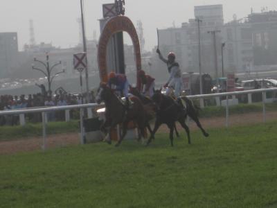 2016 バンガロール・ダービーの勝ち馬は日本産種牡馬ウィンレジェンド産駒エンジェル・ダストでした!