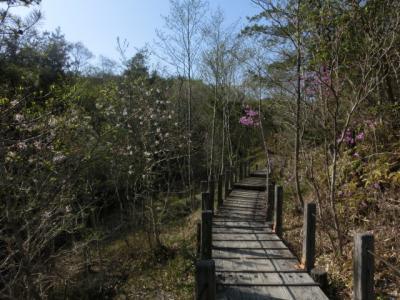 夫婦2人散策☆愛知・春日井☆築水の森、みろくの森