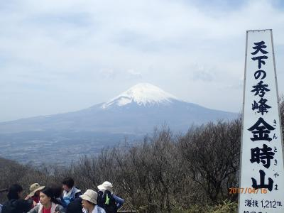 【山行記録16】今年の山行は、鎌倉アルプスと箱根金時山で軽めのウォーミングアップでスタートしました。果たして、山行と下山後の反省会のどちらが目的なのか(笑)