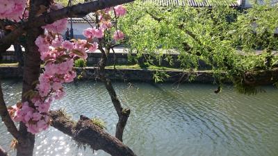 春の倉敷☆美観地区