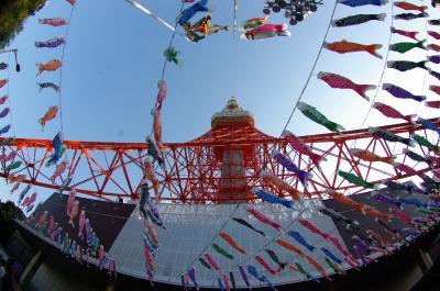 東京タワーと333匹の鯉のぼり (と さんまのぼり)