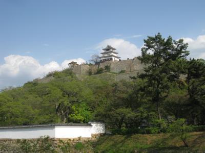 西讃岐・丸亀へ。用事を済ませ肉うどんを食べて丸亀城に登った。