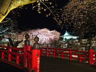 お~っ見事!弘前城の夜桜ライトアップ!からのぉ~小さな城下町『黒石』散策