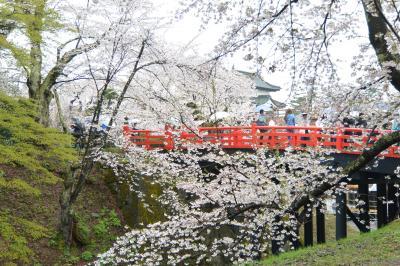 みちのく三大桜名所めぐり:(3)弘前公園