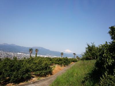 蘇我梅林付近、一徳寺、横穴古墳群と富士山