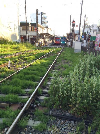 玉電こと東急世田谷線のチンチン電車、夕方からひと乗りツアー