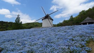 徳島・阿南・鳴門・淡路・加古川2泊3日のドライブ(15) あすたむらんど徳島 その3 風車の丘。