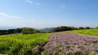 徳島・阿南・鳴門・淡路・加古川2泊3日のドライブ(25) 花さじき 淡路島。