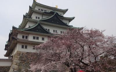輝く五人のコンサートを観て、春の名古屋を楽しもう!