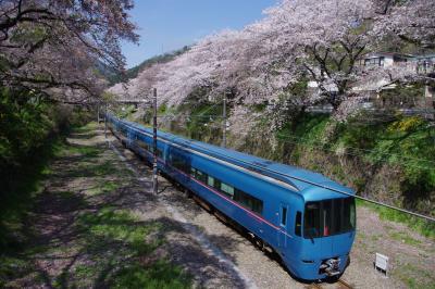 2017桜日記 山北駅&小田原城の桜