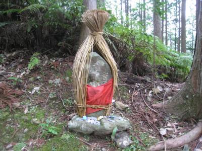 熊野古道おすすめ1番の「発心門王子コース」を歩く、そして雨の補陀洛山寺探訪《4日目 27,220歩》