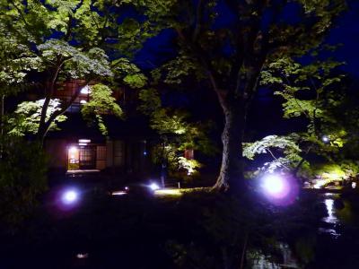 暮れゆく陽の光のなかで 新緑の風景が少しずつ変化し やがて夜の無鄰菴が姿を見せる。