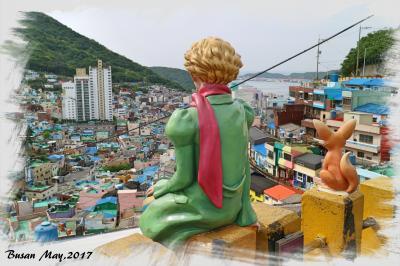 【韓国(釜山)】釜山の新観光名所!アート系路地集落「甘川洞文化村(カムチョンドンムナマウル)」