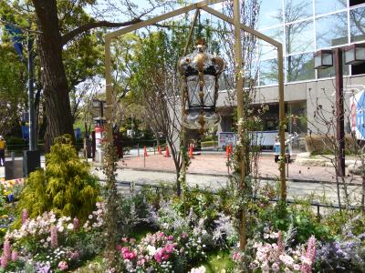 春爛漫の優雅な横浜♪ Vol33 ☆日本大通り♪ 横浜公園から象の鼻パークへ花を愛でながら歩く♪