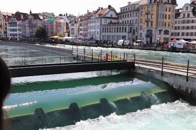 3世代夏休みスイスの旅 <vol.1>  1日目ルツェルン~2日目ユングフラウ