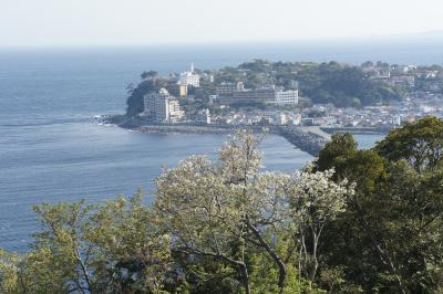 稲取温泉「石花海」に泊まり、旧天城峠を登る