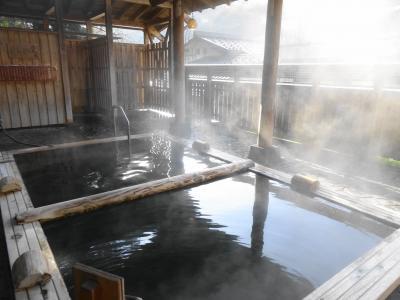 松之山・赤湯・蔵王・青根・妙高 温泉と桜と新緑をめぐる旅(2)松之山温泉 ひなの宿ちとせ
