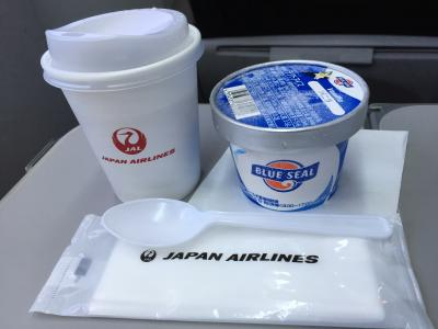 2017年5月10日 沖縄1日4便 ママのJGC修行の旅 4回目