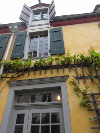南ドイツへの旅 ~ボン~ ベートーベンの生家を訪ねて