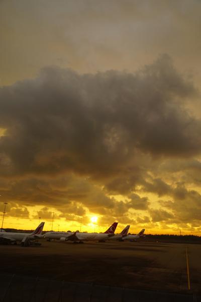 灼熱のスリランカ(1)5年がかりのジェフリー・バワの建築を巡る計画はスリランカ航空の直行便でコロンボin コロンボoutの2週間。