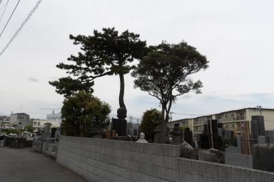JR北茅ヶ崎駅裏の墓地