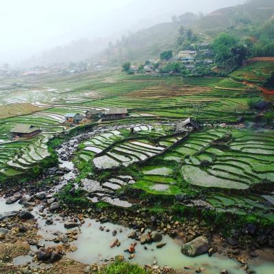 ベトナム北部ひとり旅~サパの泥だらけだけど絶景トレッキング