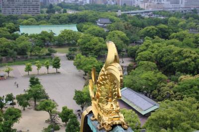 LOVE PANDA 大阪・和歌山 1