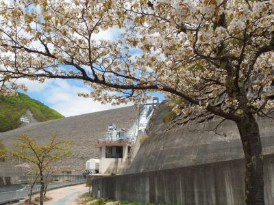 奈良俣(ならまた)ダム放水見学