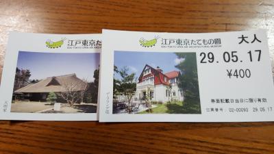 小金井公園 江戸東京たてもの園 意外に楽しい日本の家屋 ジブリのモデル