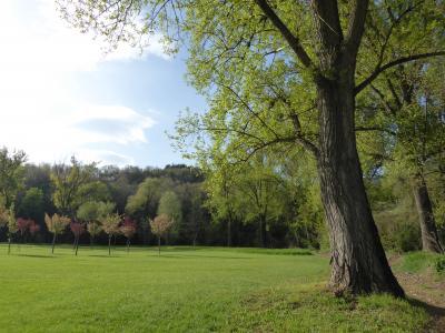 春の優雅なアブルッツォ州/モリーゼ州 古城と美しき村巡りの旅♪ Vol105(第5日) ☆L'Aquila:ホテル「Magione Papale Relais di Campagna & Ristorante」広大な庭園♪農道を優雅に歩く♪