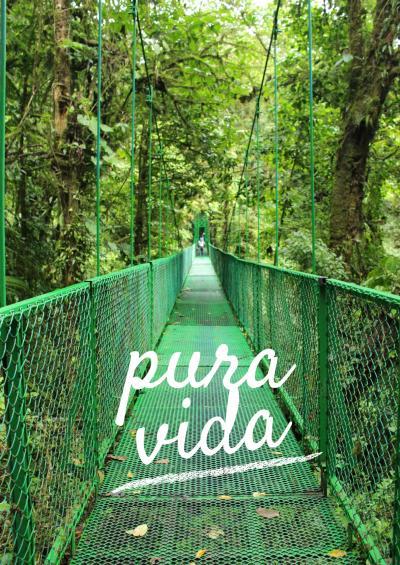コスタリカ旅行 Day3 SelvaturaParkでキャノピーに挑戦
