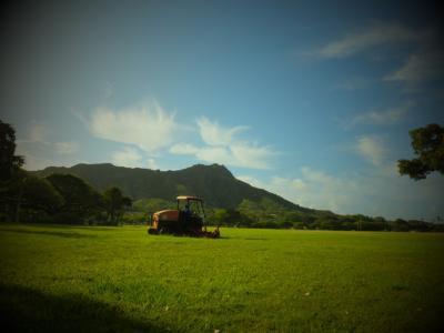 四十路女  1人ハワイ旅 1