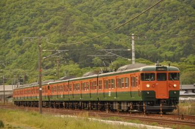 115系湘南色電車を撮りに行って来ました