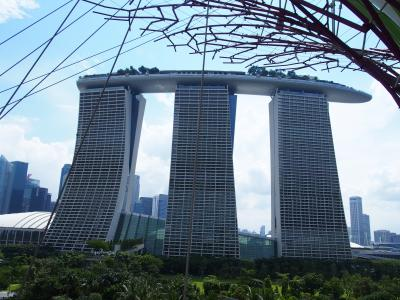 シンガポール0泊1日 緑を満喫旅!