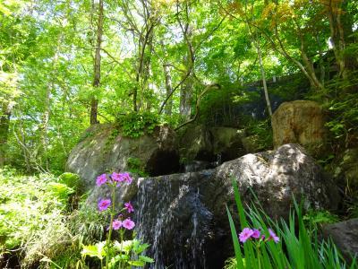 杜の都でのんびり、遠刈田温泉でまったり②:竹泉荘 Mt.Zao Onsen Resort & Spa泊