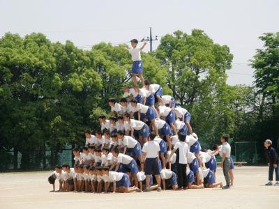 自宅に隣接する久喜市鷲宮西中学校の体育祭を見に行ってきました