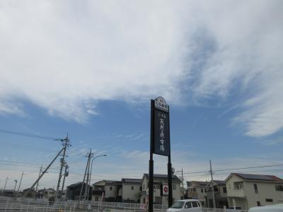 大阪中央卸売市場でアミーゴに出会ってから