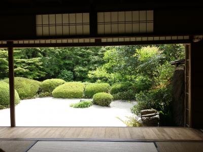 詩仙堂にツツジを見に行ったのですが。。。。お庭と座敷は楽しめました。