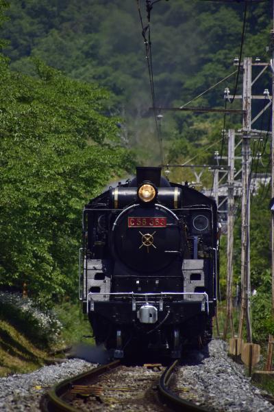 赤プレ鳳凰デフに装飾された秩父鉄道「SLパレオエクスプレス」を追いかけて、初夏の長瀞に訪れてみた