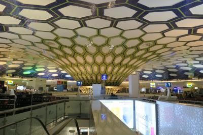 エジプト一人旅① 成田→アブダビ空港→カイロ