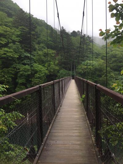 伊藤園ホテルズ 那須塩原 弾丸バスツアー 2日目森林浴ハイキング(登山?)