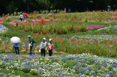 ガーデンネックレス横浜2017 里山ガーデン