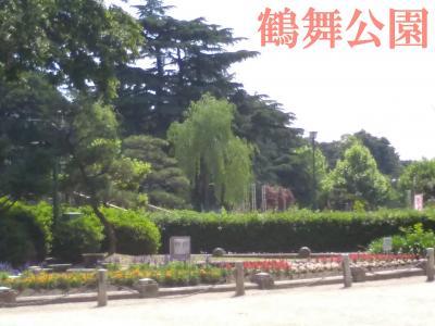 鶴舞公園でバラ、みてきました。