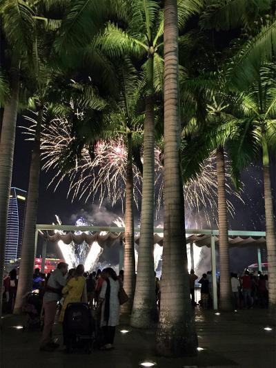 2015年8月【No.2】シンガポール3泊4日の旅☆2・3・4日目~カジノでまさかの!?笑いが止まらない夜♪ Pan Pacific Singaporeに滞在