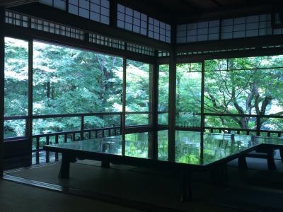 新緑の京都 日帰り